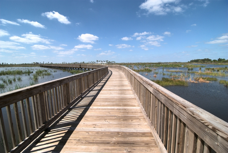 A boardwalk at the Wellington Environmental Preserve in Wellington, Florida